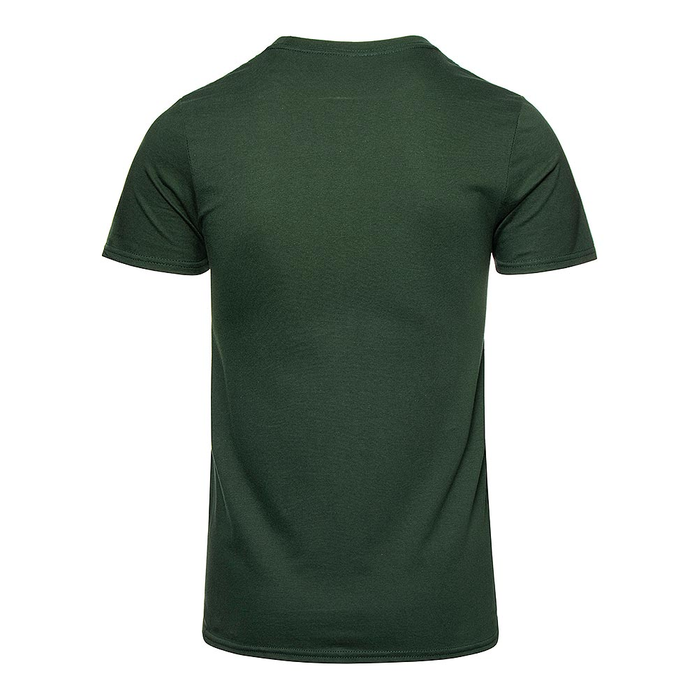 Hysterical Heritage Iabacus T Shirt (Green)