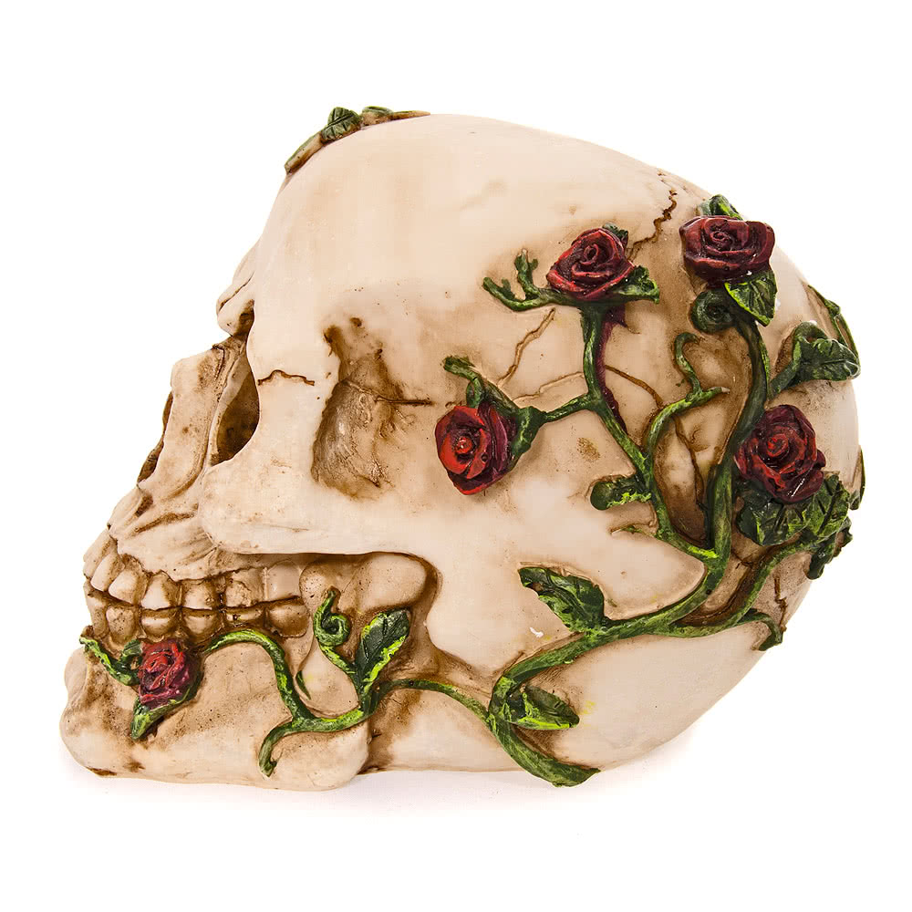 Nemesis Now Rose Beyond Skull Figurine (15cm)