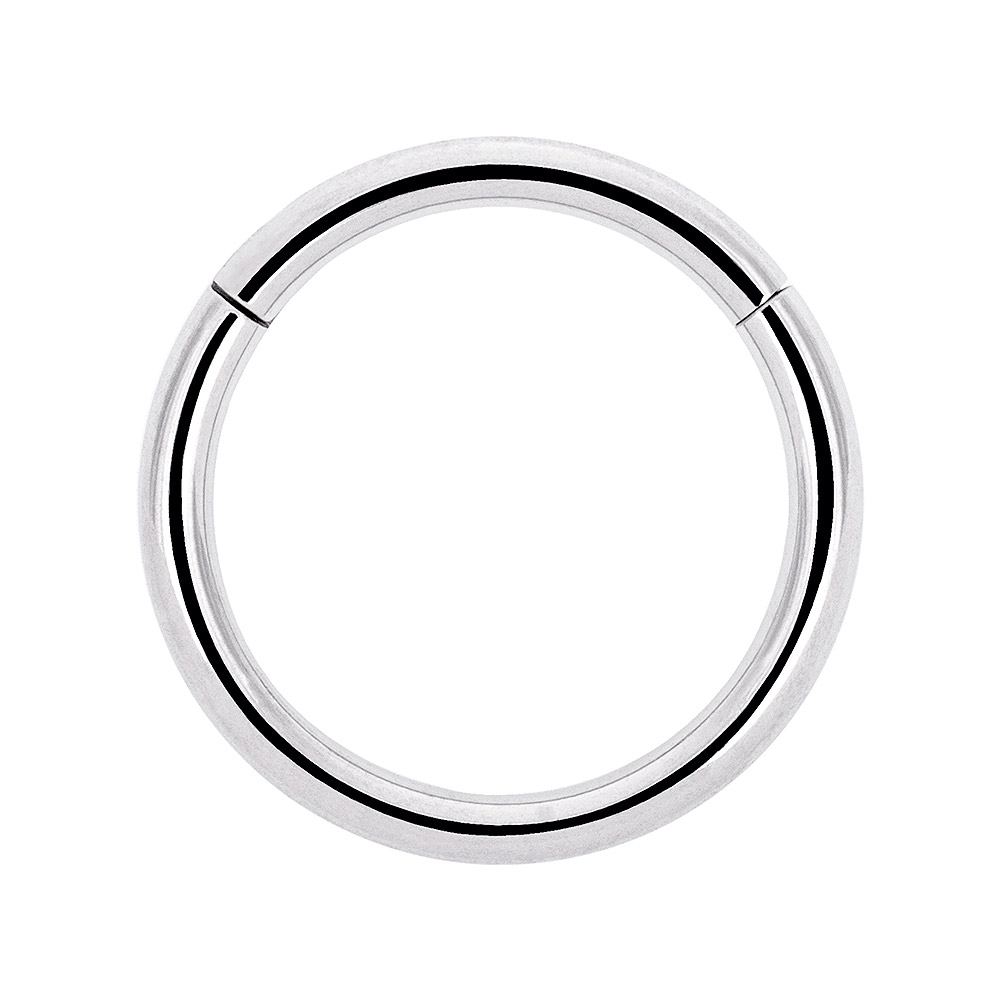 Blue Banana Surgical Steel 1.2mm Hinged Segment Ring (Silver)