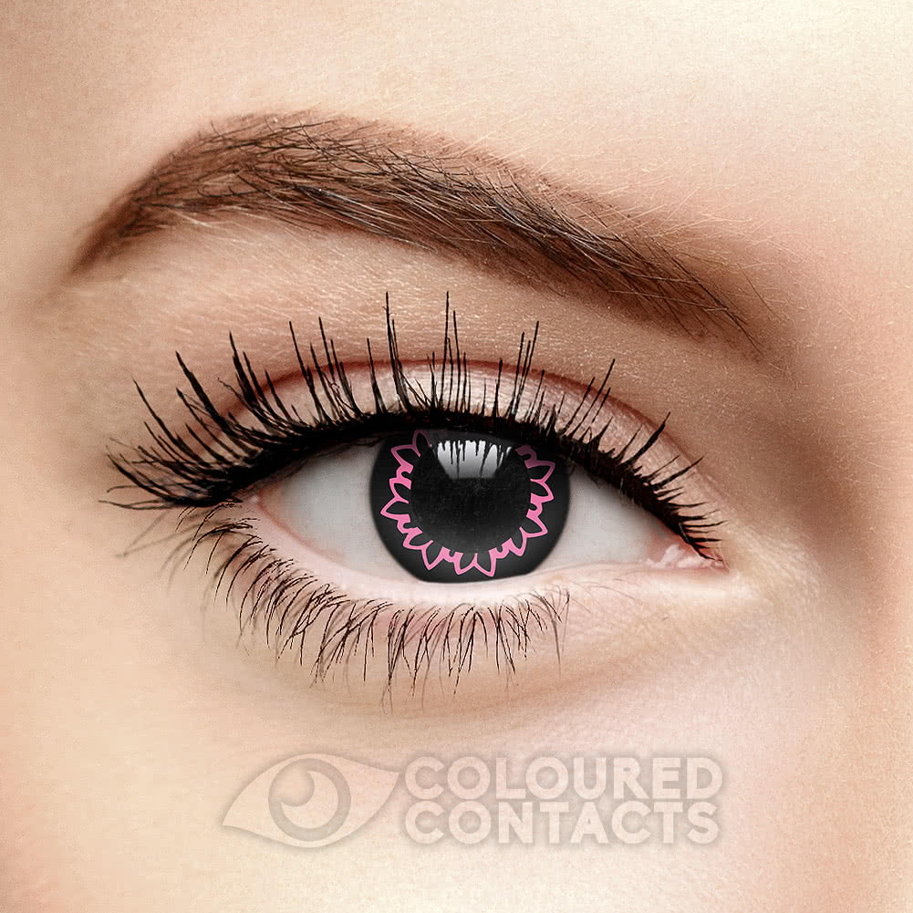 Butterfly 1 Year Coloured Contact Lenses (Black/Pink)