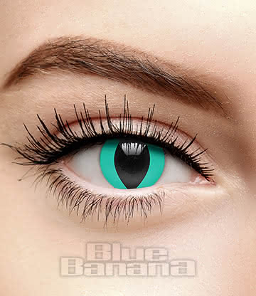 Cat's Eye 1 Day Coloured Contact Lenses (Aqua Blue)