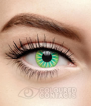 Dolly 90 Day Coloured Contact Lenses (Aqua)