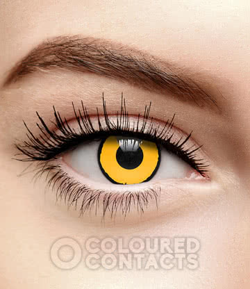 Raven 90 Day Coloured Contact Lenses (Yellow)
