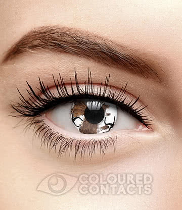 Zombie Infection 90 Day Coloured Contact Lenses (White)