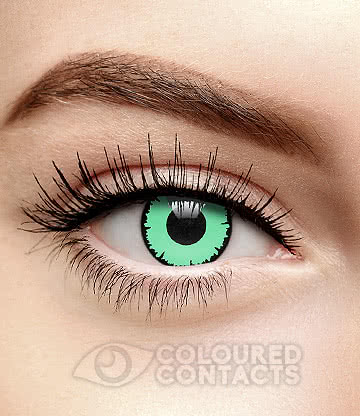 Angelic 90 Day Coloured Contact Lenses (Green)