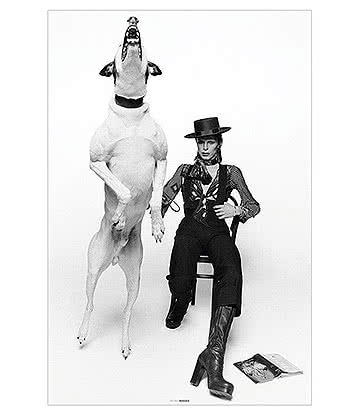 Official David Bowie Diamond Dogs Poster - Affiche Musique Noir & Blanc