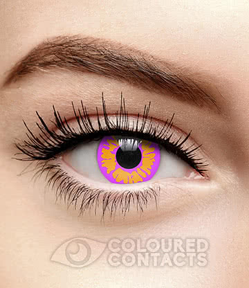 Wolf 90 Day Coloured Contact Lenses (Violet)