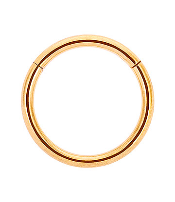 Blue Banana Plasma Gold 1.2mm Ring Mit Klappsegment (Gold)