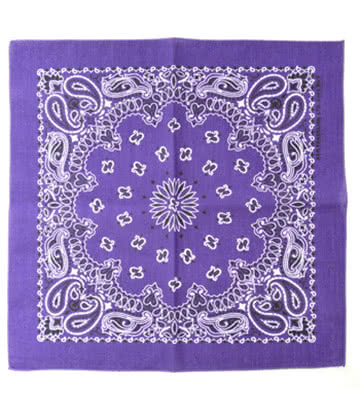 Blue Banana Paisley Print Bandana (Purple)