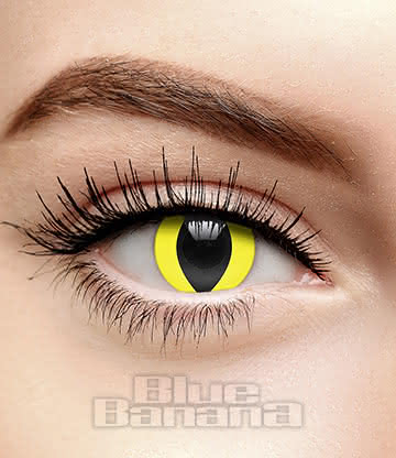 Cat's Eye 30 Day Coloured Contact Lenses (Yellow)