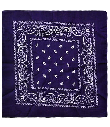 Blue Banana Paisley Bandana (Purple)