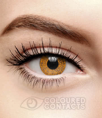 One Tone 90 Day Coloured Contact Lenses (Brown Hazel)